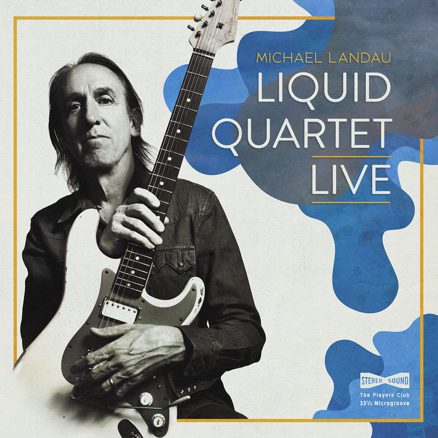 <h5>Michael Landau<br>Liquid Quarted Live</h5>