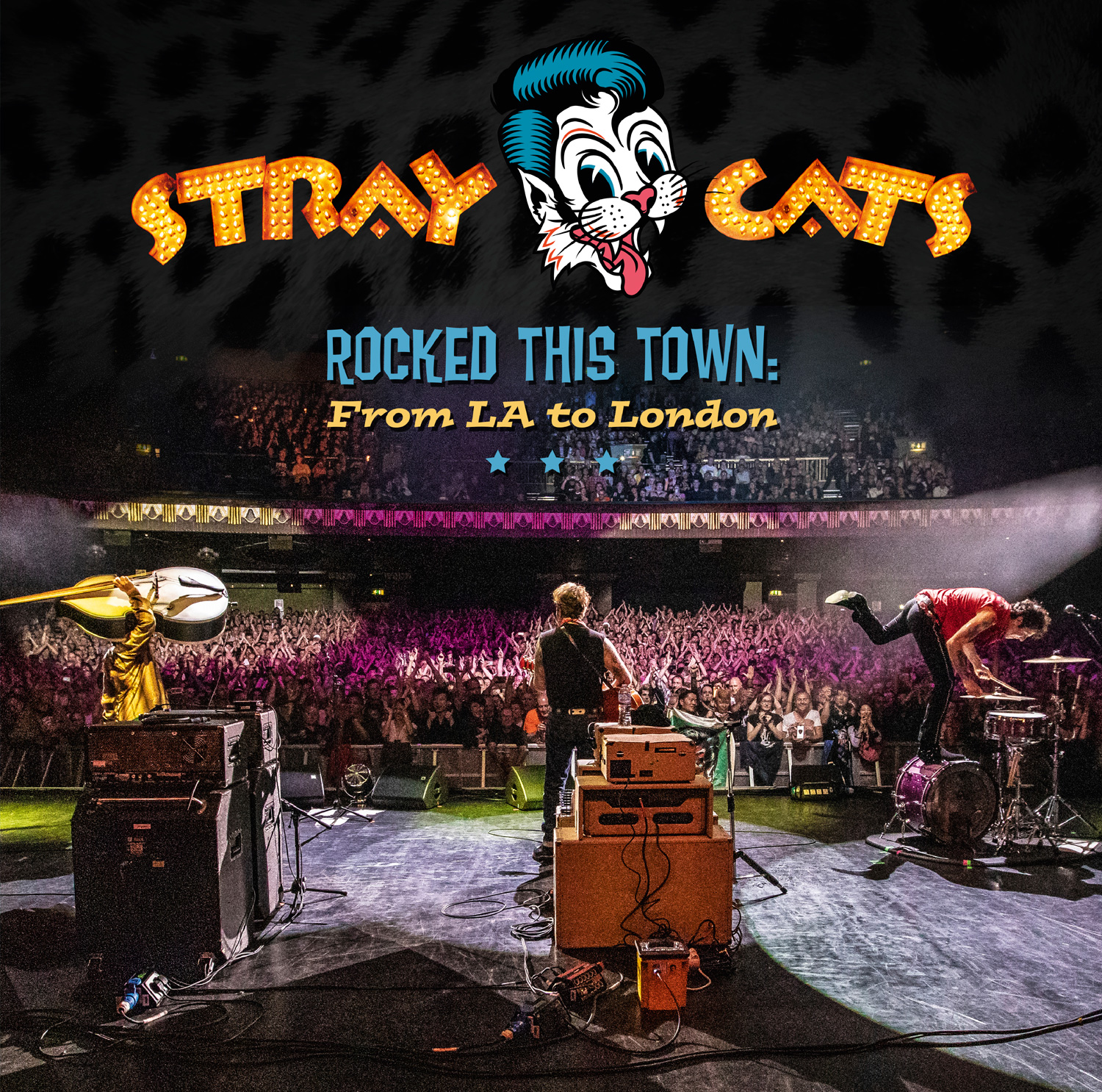 <h5>Stray Cats<br>Rocked This Town</h5>
